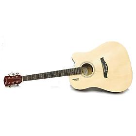 Đàn guitar Acoustic Rosen R135