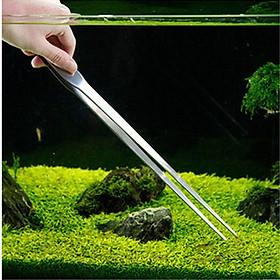 Nhíp inox mũi thẳng cắm cây thủy sinh 30cm cho hồ cá