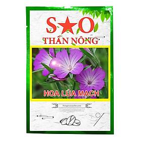 Hoa lúa mạch Sao Thần Nông màu tím - gói 100 hạt tỉ lệ nảy mầm cao dễ chăm sóc hoa siêng ra hoa thích hợp với điều kiện khí hậu cả nước