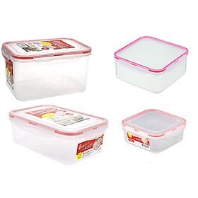 Combo 4 hộp nhựa trong đựng thực phẩm Inomata - Hàng nội địa Nhật Bản