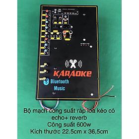 Bộ mạch công suất đơn 600w có echo, reverb ( reverb 3 volume)