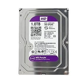Ổ cứng HDD 1T Western Tím SATA - Tặng cáp dữ liệu SATA 3.0