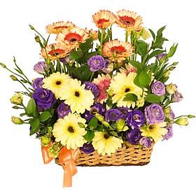 Giỏ hoa tươi - Vũ Điệu Màu Sắc 3996