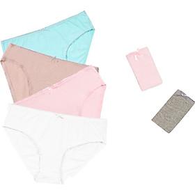 Combo 06 quần lót nữ cotton Vera