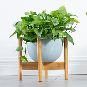 Giá kệ gỗ mini để chậu cây hoa để trong nhà hoặc ngoài trời - Gỗ tre tự nhiên