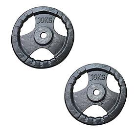 Bộ 2 bánh tạ gang 10kg Đại Nam Sport (Tổng 20kg)