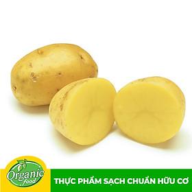 Khoai tây hữu cơ Organicfood - 500gram