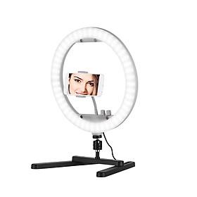 Đèn LED Chụp Ảnh Selfie Để Bàn Kèm Giá Đỡ Bảng Gương Điện Thoại (13 inch) (30W) (3200K-5600K)