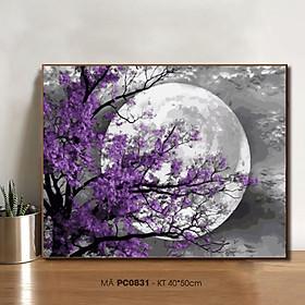 Tranh tô màu theo số sơn dầu số hóa đêm trăng hoa tím PC0831