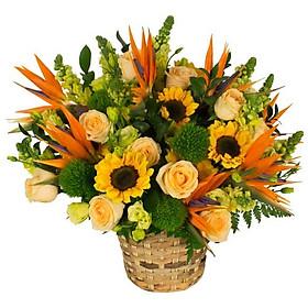 Giỏ hoa tươi - Rừng Vàng 3956