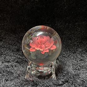 Quả cầu thủy tinh bông hồng đỏ tình yêu 3D