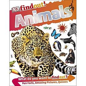 DKfindout! Animals