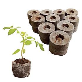 Combo 5 viên nén ươm hạt xơ dừa giữ ẩm tốt cho đất