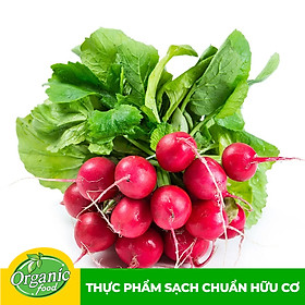 Củ Cải Đỏ hữu cơ Organicfood - 350g