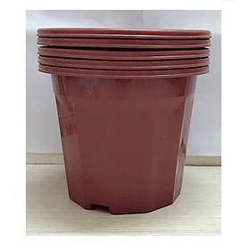 Hình ảnh 5 Chậu Nhựa Trồng Hoa, Cây Cảnh E230 CN