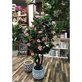 Cây Hoa Hồng nhựa trang trí nhà cửa