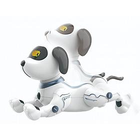 Chú chó thông minh VECTO K16