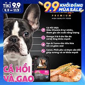 Combo 5 thức ăn cho chó trưởng thành Ganador vị cá hồi & gạo Salmon & Rice 400 gram