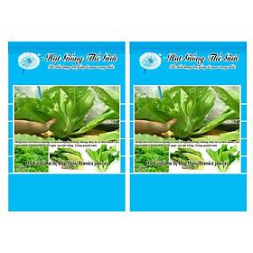 Bộ 2 Gói Hạt Giống Cải Bẹ Dưa Muối (Brassica juncea) 10g