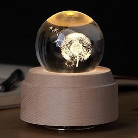 Hộp nhạc quả cầu pha lê 3D-Bồ Công Anh