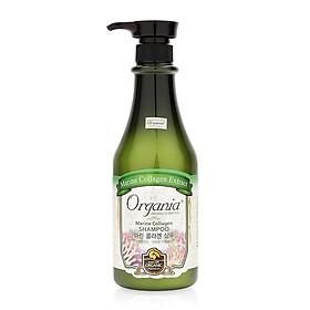 Combo 2 Dầu Gội Chống Rụng Tóc Marine Collagen Shampoo Organia-1