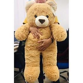 Gấu Bông Teddy Cao Cấp OSSSO120 Khổ vải 1m4  cao 1m2 Tặng balo Canvas Đựng Gấu