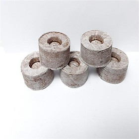 Hộp 100 viên nén mùn dừa loại 1 chứa dưỡng chất vi sinh, chuyên dùng ươm hạt, chiết cành, lấy ngó dâu tây