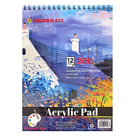 Tập Giấy Vẽ A4 Acrylic Pad Colormate ARTIST-AP (12 Tờ)