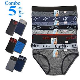 Combo 5 Quần Lót Nam cao cấp   quần xì nam   quần sịp nam   nhiều lưng   vải cotton 2 chiều   hiệu CM   lưng lớn   cạp to   kiểu brief   tam giác truyền thống   đồ lót nam