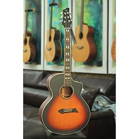 Đàn Guitar Acoustic NG STYS ( SOLID TOP)