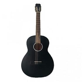 Đàn guitar classic tập chơi SV650C