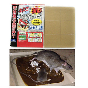 Miếng keo bẫy chuột siêu dính hiệu quả nội địa Nhật Bản + Tặng gói hồng trà sữa (Cafe) Maccaca siêu ngon