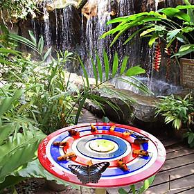 Vé Tham Quan Butterfly Park & Insect Kingdom Singapore