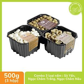[Chỉ Giao HCM] - Combo 3 loại Nấm Sò yến- Nấm Ngọc Châm Nâu- Nấm Ngọc Châm Trắng - 500gr