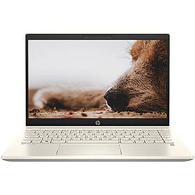 Laptop HP Pavilion 14-dv0008TU 2D7A5PA (Core i5-1135G7/ 8GB DDR4 3200Mhz/ 512GB PCIe NVMe M.2 SSD/ 14 FHD IPS/ Win10 + Office) - Hàng Chính Hãng