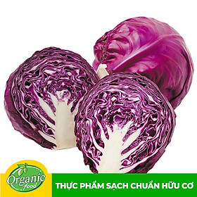 Bắp cải tím hữu cơ Organicfood - 500g