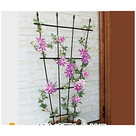 KHUNG HOA LEO HÌNH QUẠT - KHUNG TRỒNG CÂY - Hàng chính hãng NHẬT BẢN - Dùng làm khung giá đỡ cho hoa hồng leo, cây hoa leo