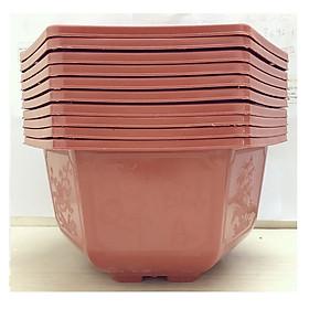 10 Chậu Nhựa Lục Giác Trồng Hoa, Cây Cảnh  Bonsai 280x180