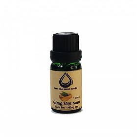 Tinh dầu gừng nguyên chất Ngọc Tuyết 10ml chiết xuất từ gừng