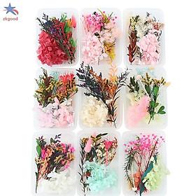 Hộp hoa khô mix tổng hợp trang trí resin