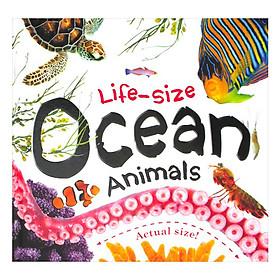 Life-Size Ocean Animals