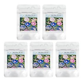 Bộ 5 Túi Hạt Giống Hoa Bìm Bìm - Mix Nhiều Màu (Ipomoea Purpurea) (50 Hạt/Túi)