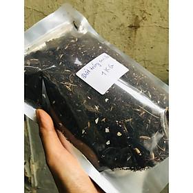 Đất trồng sen đá gói 1KG