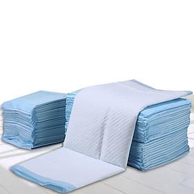 Miếng lót vệ sinh cho chó mèo S-M-L-XL-79100
