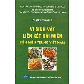 Vi Sinh Vật Liên Kết Hải Miên Biển Miền Trung Việt Nam