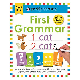 First Grammar: Wipe Clean Workbooks