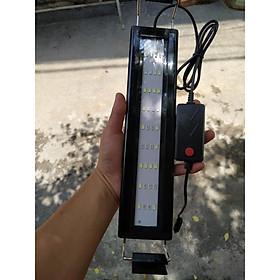 Đèn bể cá LED ĐỔi MÀU 4 dãy led cho hồ cá cảnh
