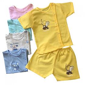 Combo 3 bộ quần áo tay ngắn màu Cài Lệch Thái Hà Thịnh