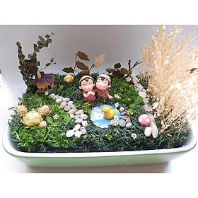 Chậu hoa khô tiểu cảnh Bên cánh đồng