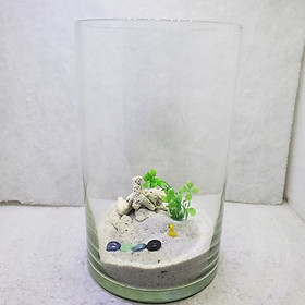 Bể cá mini để bàn tròn nuôi cá cảnh kích thước D18 H30 có tiểu cảnh